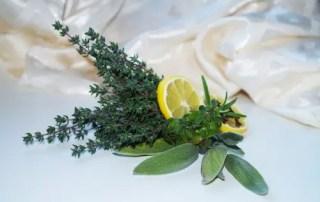 Zitronen-Kräuter-Pesto