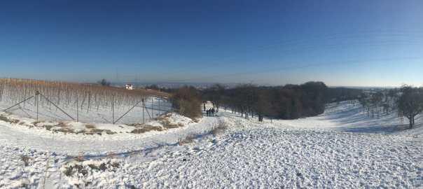 Merbitzer Winterblick