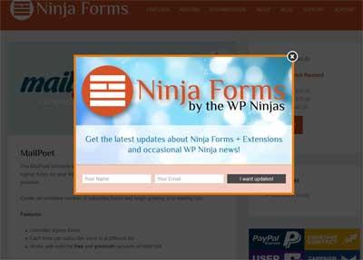 Pop-up light box demanding newsletter subscription.