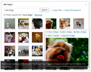 Image Inject for WordPress search