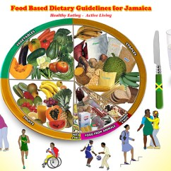 Diagram Food Guide Vdo Viewline Tacho Wiring Based Dietary Guidelines For Jamaica Ministry Of Health