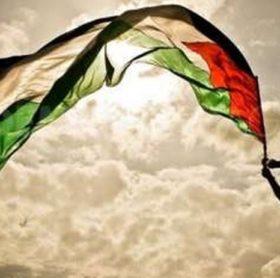 فلسطين واستراتيجية المقاومة