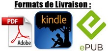 pdf-kindle-epub-small