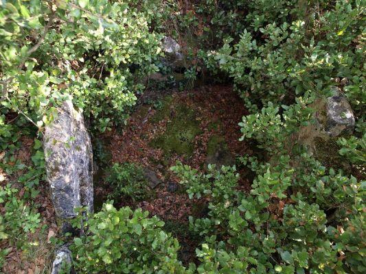 Dolmen del Gavatx