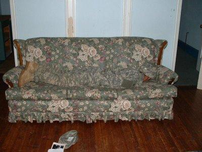 camo in couch illusion