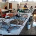 Mcg slika dana 2013 06 17 riblja pijaca bar najror zoltan