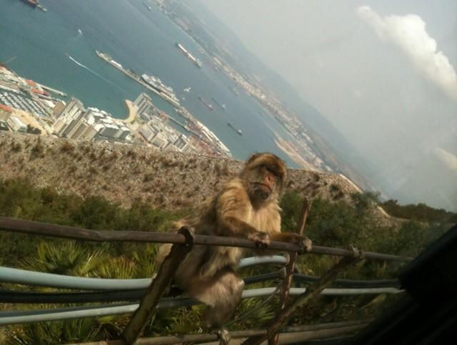 Gibraltar. Foto: Ivana Kovačević