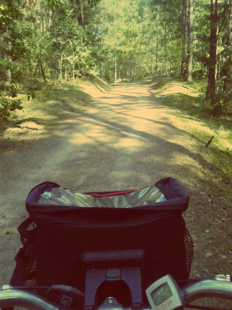 Radfahren in Vilnius im Sommer