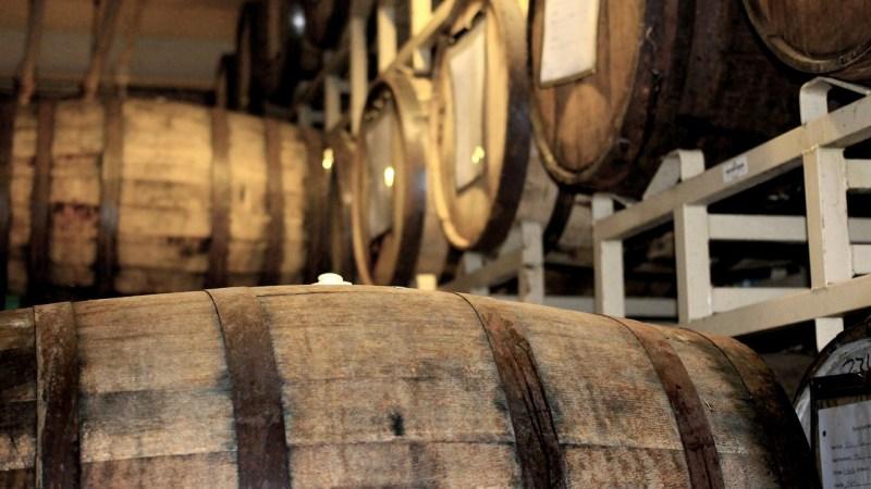 Auf ein Glas. Verkostungen von Rum, Whisky, Tequila, Mezcal und anderen edlen Tropfen