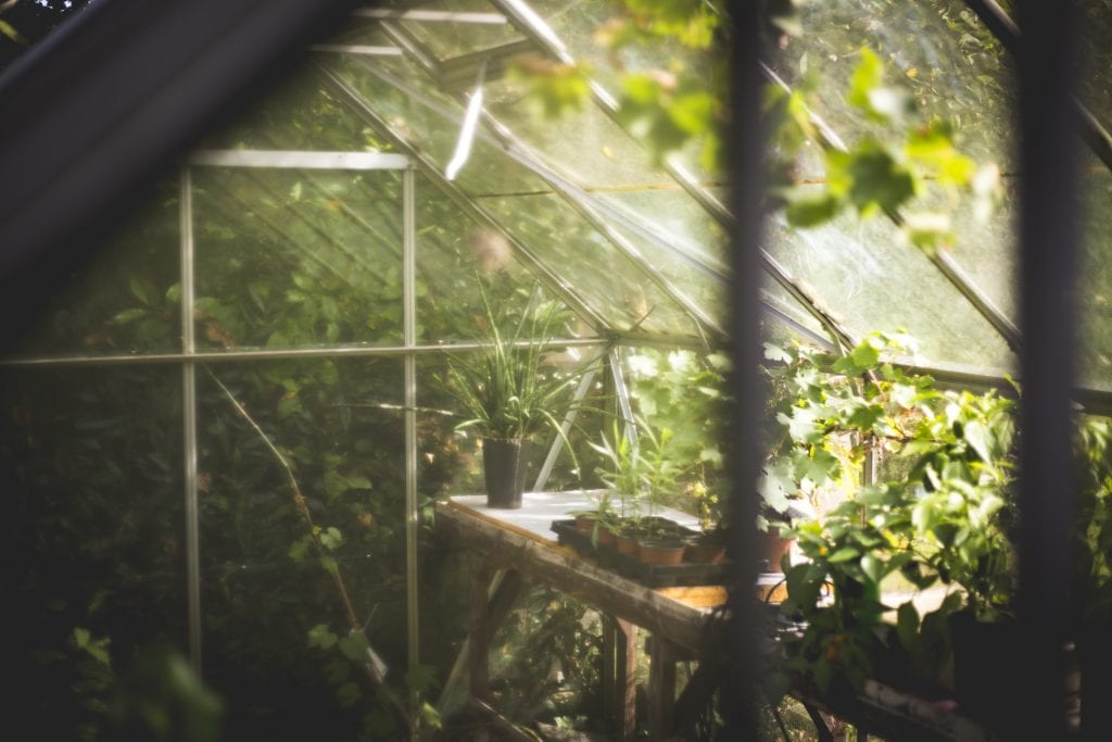 Make A Romantic Summer Garden