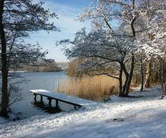 winter-landscape-499515_1920-1024x768.jpg