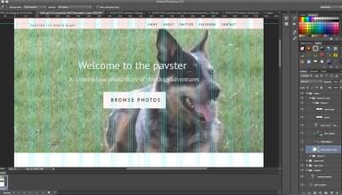 creating a web-design