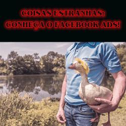 Facebook Ads: como anunciar