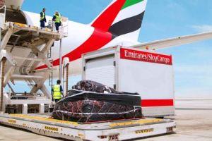 أفضل وارخص شركات الشحن الجوي في دبي مضمونة
