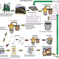Diagram Of Paper Making Process Traxxas Slash 2wd Transmission Klebsiella Pneumonia Bacteria Found In Pulp And Biosolids