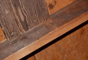 Mold or aging wood?