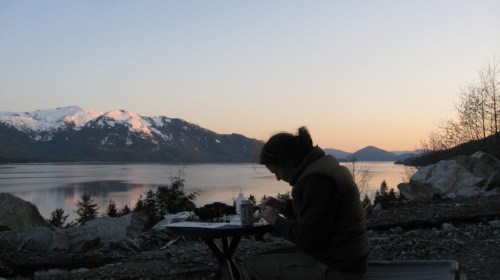 Processing spruce buds for DNA collection, on the banks of the Skeena River, northern British Columbia. Photo courtesy Jill Hamilton.