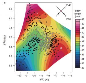 Arnegard et al (2014), figure 1.