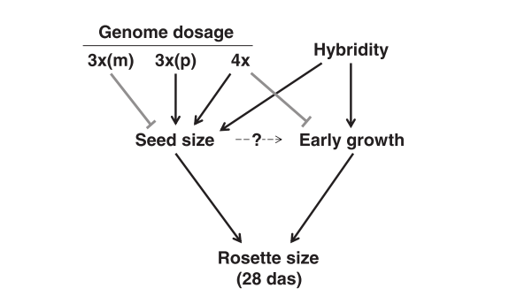 Figure 5 from Fort et al.
