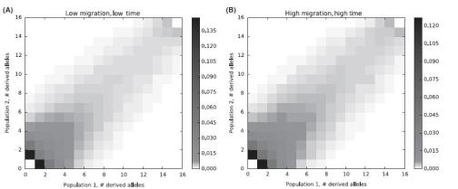 Two population AFS under two simulated scenarios - Fig. A showing  the case of low m, and low t, versus Fig. B showing the case of high m, and high t. Image courtesy: Hey et al. (2015) DOI: 10.1111/mec.13381