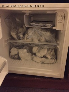 Hotel fridge algal storage ...