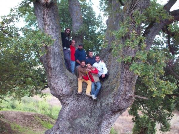 La quercia di 6 mt di circonferenza con 7 persone. Foto di Michele Fratino.