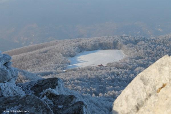 neve alberi e boschi a Capracotta