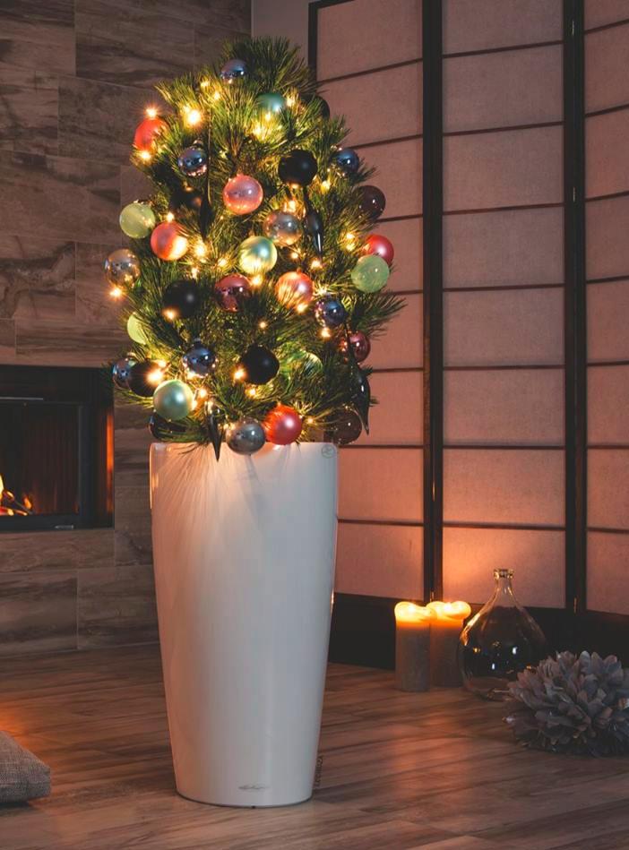 Un originale vaso per lAlbero di Natale  Mollo Store