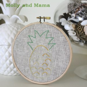 Hand Embroider a Simple Hoop Art Project