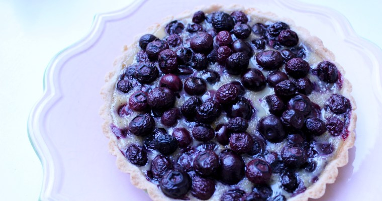 Blueberry Alsatian Tart