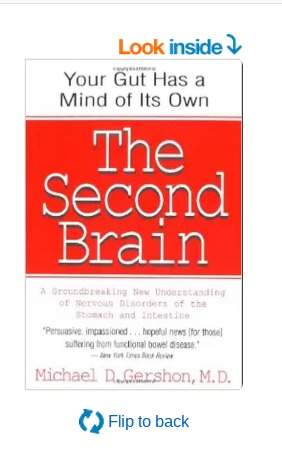 You Have a Second Brain - Your Gut!