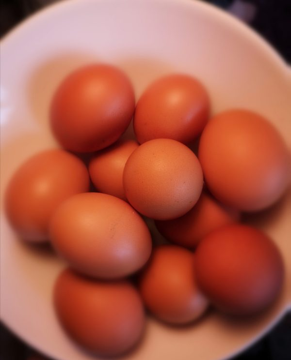 Buckinghamshire free-range high welfare eggs