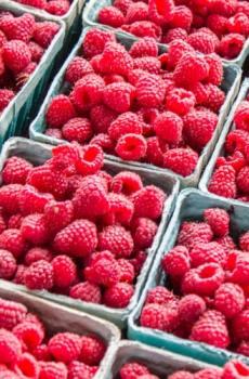 Punnetsa of raspberries