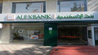 صورة بنك الإسكندرية يتعاون مع برنامج الأغذية لدعم صغار المزارعين