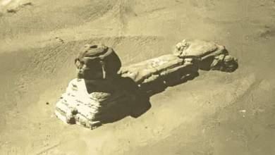 صورة أبو الهول – سنة ١٨٠٠ تم التقاط الصورة بالمنطاد