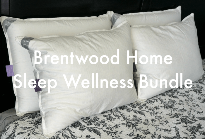 Brentwood Home Pillows Review  Giveaway  Mom Always Finds Out