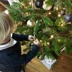 echte kerstboom vs kunstkerstoom