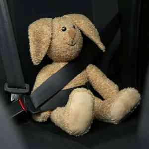 Veilig in de auto : Wat je wilde weten over autostoeltjes en zitverhogers