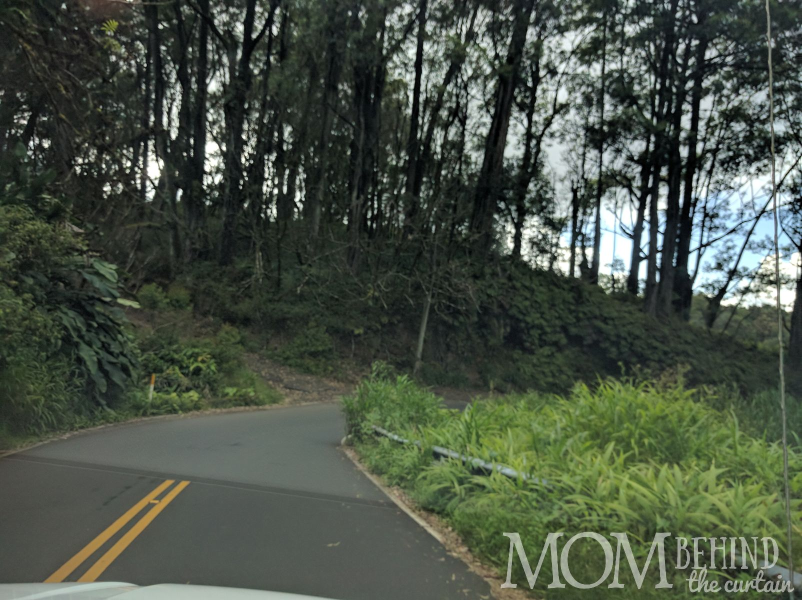 Road to Hana narrows to a single lane on curves and bridges.