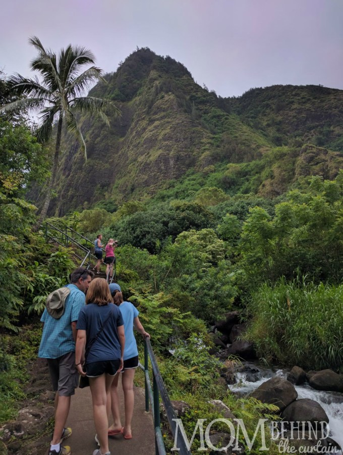 Walking the Iao Valley hiking loop with views of tropical peaks and tropical plants. If you're not up for a big hike or theperilous Hana Highway don't miss the Iao Valley!