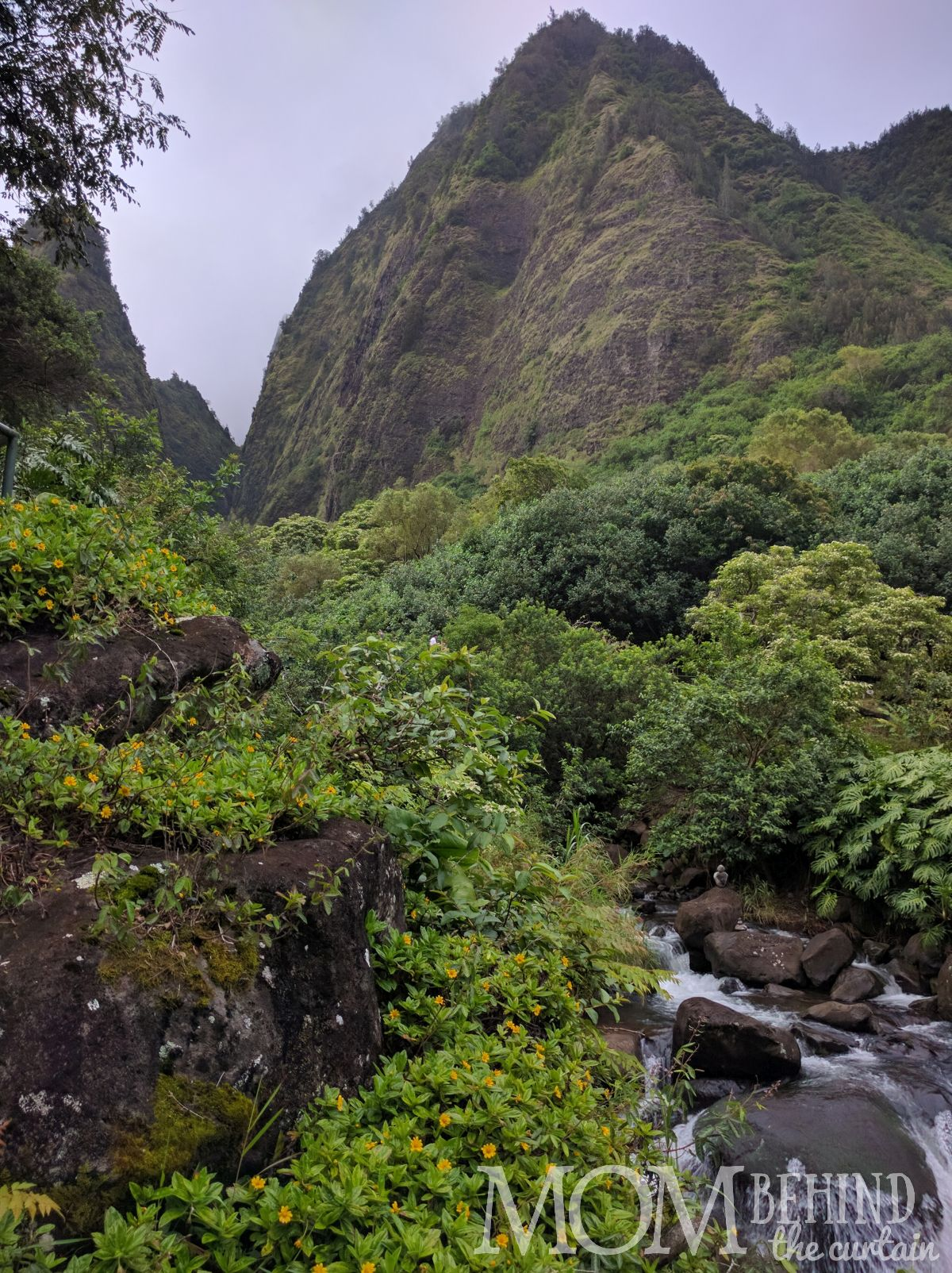 Maui waterfall and Iao needle Iao Valley walking hike.