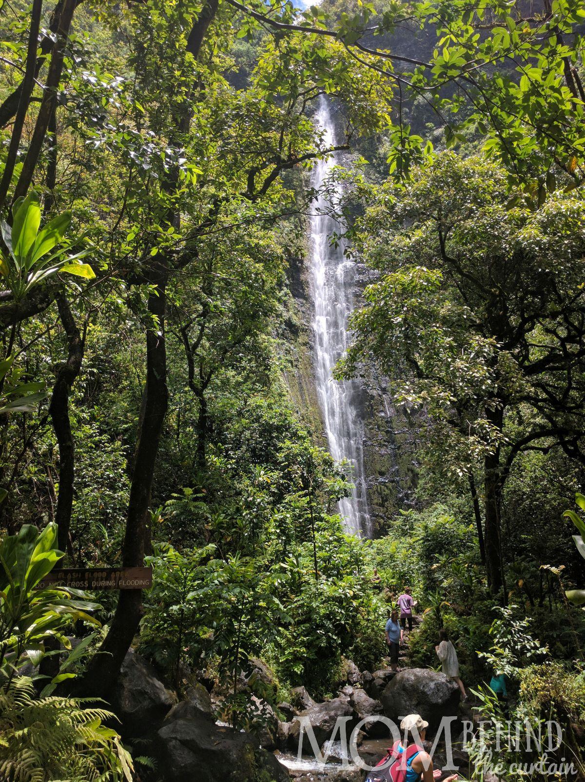Waimoku Falls hike off the Road to Hana