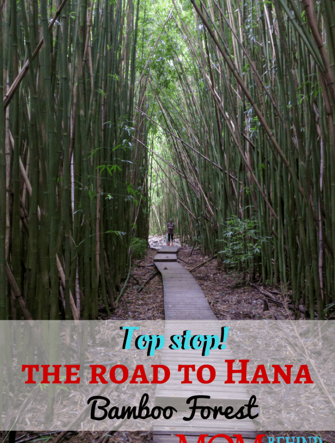 Be sure to plan for this top stop on the Road to Hana - Maui's best hike! To see the magical Bamboo Forest and beautiful waterfalls. Find out how long it takes to hike the Pipiwai trail to Makahiku Falls, the Bamboo Forest, and Waimoku Falls. I cover what to expect in terrain, difficulty, and weather.