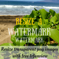 Resize Transparent PNG Images in Irfanview