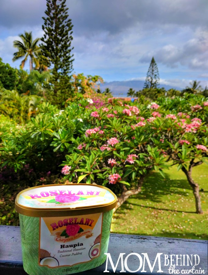 Coconut custard ice cream on the tropical island of Maui made in Hawaii - don't miss these Maui favorites on your trip - what to eat in Maui, local specialities