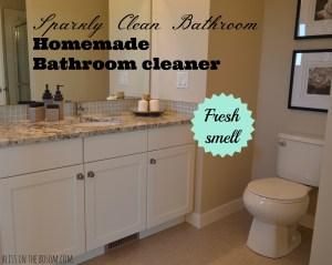 DIY bathroom spray on cleaner