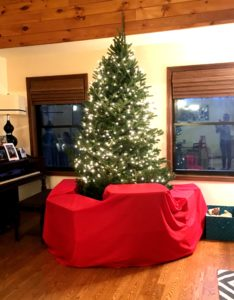 Putting Up a Christmas Tree Alone