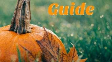 fall gift guide momcavetv