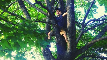 How to Get Kids to Play Outdoors Kid in Tree MomCave