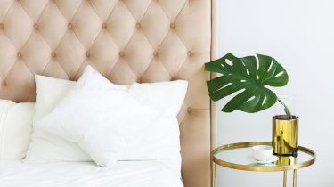 Sleep Tight: Signs It's Time To Get a New Pillow